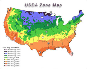 usda-zone-map