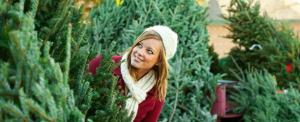 christmas tree header 1